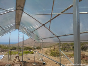 9.-Greenhouse-under-construction_sm